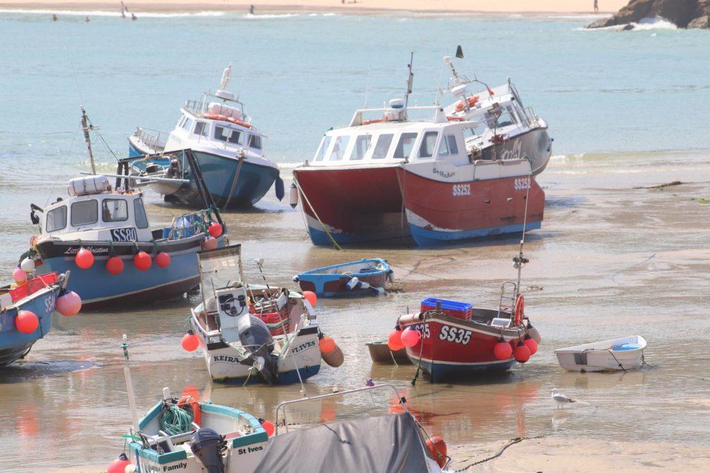 Fishing Sub Group
